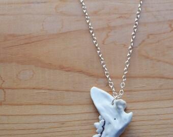 Jawbone Necklace, American Martin, Teeth