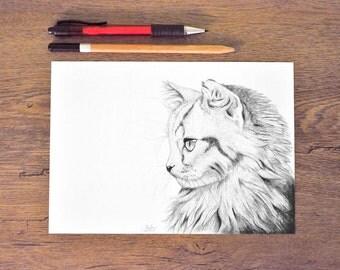 Art print pencil drawing - Katze - black and white - illustration cat