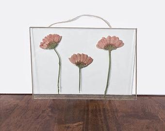 Real Pressed Flower Floating Frame Glass Wall Art - Chrysanthemum Stem Trio