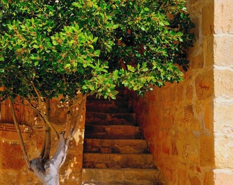 Stair Well Malta Print       10129-05475