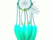 Teal Dream Catcher, Goose Shoulder Feathers