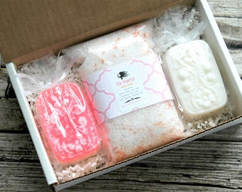 Spa Gift Set . Mother's Day Gift . Spa Gift Box . Pink Grapefruit Coconut Milk Bath Gift Set . Birthday Gift for Her . Best Friend Gift