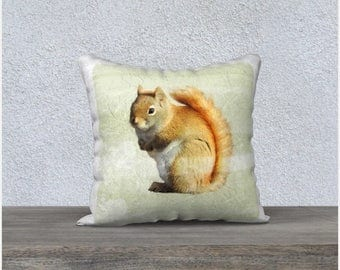 Red Squirrel Throw Pillow Cover in Sage Green with Distressed Flower and Square Tile Design Decorative Woodland Animal Nature Home Decor