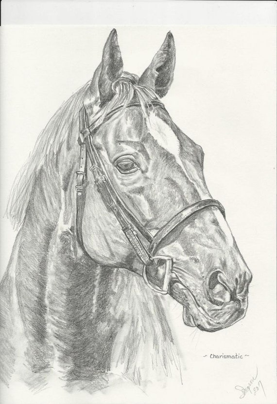 """Charismatic Original Graphite/pencil drawing matted 16""""x20"""""""