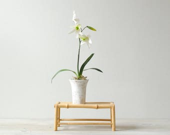 Vintage Bamboo Stand, Bamboo Display Stand, Small Riser