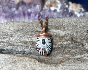 Opihi Shell Necklace - Hawaiian Seashell Jewelry - Hawaiian Jewelry - Mermaid Tears Hawaii - Hawaii Seashell Necklace - Boho Beach Pendant
