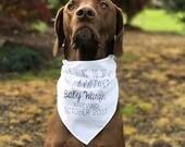 Baby Announcement Triangle Cotton Dog Bandana