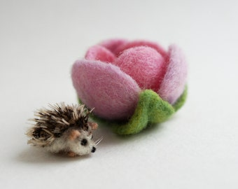 Tiny hedgehog in a flower