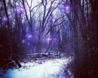 Winter Sprites photo print,  fairy photography, fantasy photography, fairy photo, surreal photography, fairytale, storybook, myth, magic