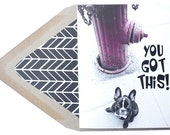You Got This Card -  Motivational, Funny, Frenchie, French Bulldog, Dog, Animal, Pet, Photography