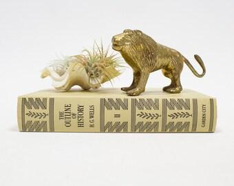 Vintage Brass Lion Figurine / Statue, Home Decor Accents