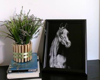"Horse Art Print - 8""x10"" Art - Horse Art - Horse Drawing - Girls Room - Pencil Art Print - Home Essentials - Black and White - Home Decor"