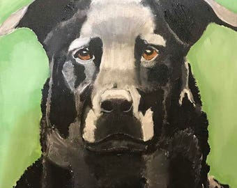 "Custom made, pet, portrait, 10"" x 10"", dog, cat, horse, or other animal."