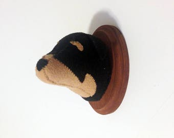 Rottweiler dog faux taixdermy on wooden mount