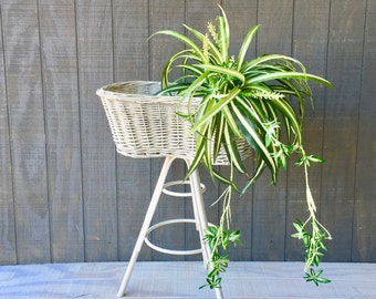 Vintage White, Wicker and Wood Plant Stand