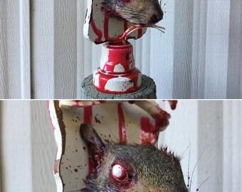 Squirrel Head Mount 003- Zombie