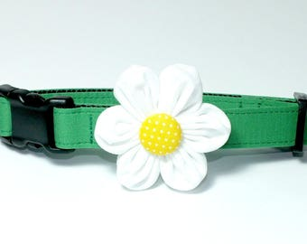 Daisy Dog Collar Set, flower for dog collar, wedding flower, pet collar flower, collar flower