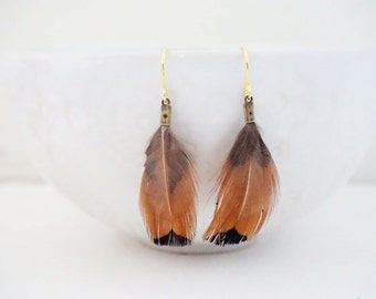 Brown and Black Feather Earrings