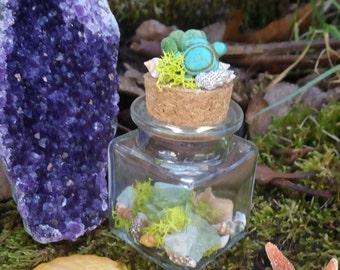 succulent decor, crystal bottle, terranium, boho decor, amethyst, mermaid, turtle, seashell, beach