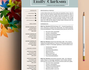 Resume Template, Professional Resume Template, Creative Resume Template For Word, Two Page Resume Template, Modern Resume Template Download