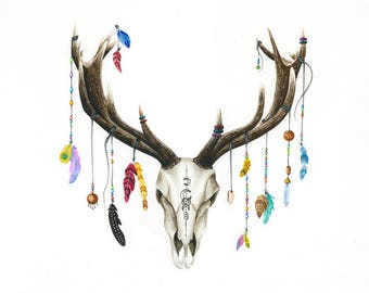 Deer skull with pendants and feathers