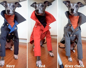 Italian Greyhound apparel;trench coat