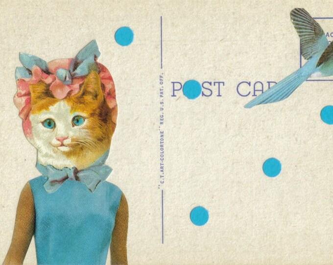 Cat Postcard Art