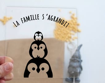 Pregnancy Announcement frame plexi
