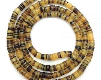Shell beads, Hammershell, honey yellow, 5 mm, 1 XL-S