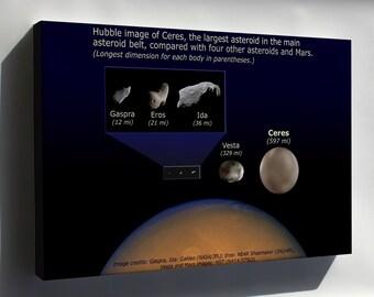 Canvas 16x24; Asteroid Size Comparison