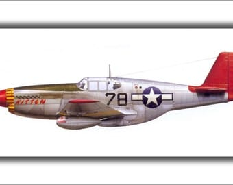 16x24 Poster; P-51C Mustang Flown By Tuskegee Airmen