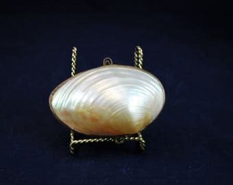 Vintage Natural Shell Clutch Style Purse 4 by 2 1/2 Inch No Handle        01371