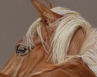 Palomino Horse - Blank Greetings Card/Art Card/Notelet