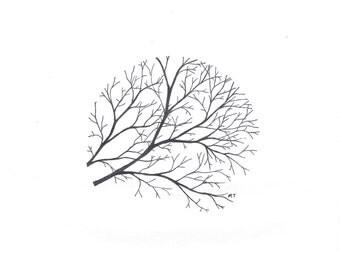 Circle Branches - Giclee Print - Art Print - Illustration - Nature - Pen