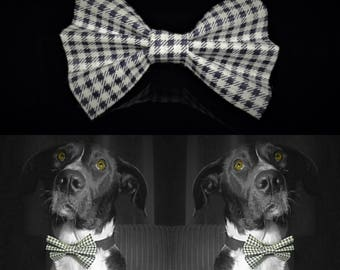 Squares Dog Bow Tie - Black