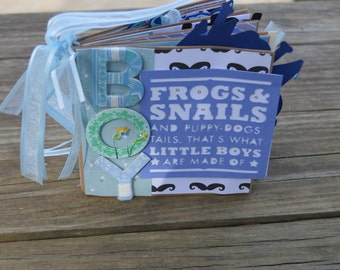 Baby Boy Scrapbook- Snakes and Snails