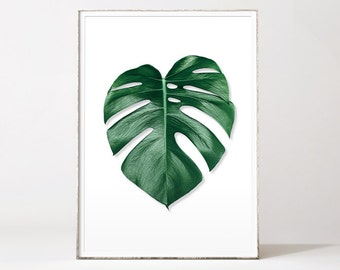 Palm leaf print, botanical prints, tropical prints, monstera leaf, monstera deliciosa, palm leaf art, botanical art, scandinavian wall art