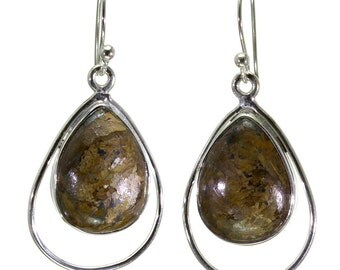Bronzite Earrings, 925 Sterling Silver, Unique only 1 piece available! color brown, weight 6.3g, #29425