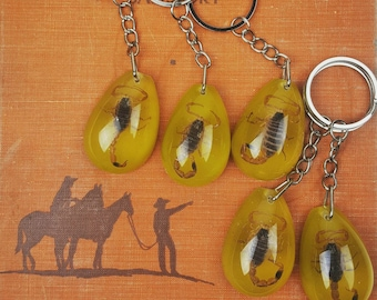 Vintage Amber Real Scorpion Keychain Insect 70s deadstock