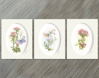 Butterfly Art Collection - Set of Prints - Set of Three Prints - Set of 3 Prints - Art Prints - Wall Art - Nursery Wall Art - Butterfly Art