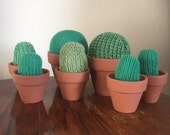 Knitted cactus in mini plant pot, handmade cute decoration plants cacti fun gift