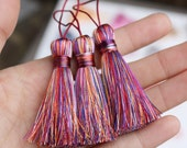 Mixed Color Tassel, Plum Pink Rainbow Tassel, Pink Tassel, Plum Pink Tassel, Mixed Color, Multiple Colors, Different Colors, AB080