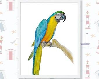 Parrot Art Print Ara Macaw Digital Instant Download Bird Wall Art Tropical Decor Parrot Watercolor Tropical Print Nursery Printable Art Ara