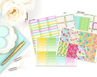 Summer Pineapple Collection-Happy Planner Stickers