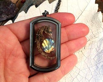 Real seahorse terrarium necklace // taxidermy necklace // gothic necklace // preserved seahorse necklace // oddity necklace // labradorite