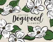 Dogwood Flowers Vector Clipart - INSTANT DOWNLOAD - High Res, Vector, EPS, png, illustration, for baby showers, weddings and more