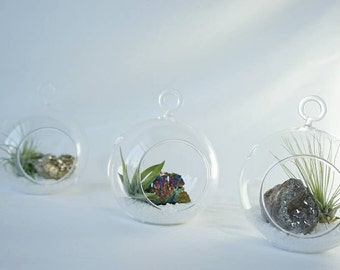 NEW! Petite Air Plant Terrarium Kit - Crystal - Build your own - Druzy - Geode - Airplant - Hanging Garden