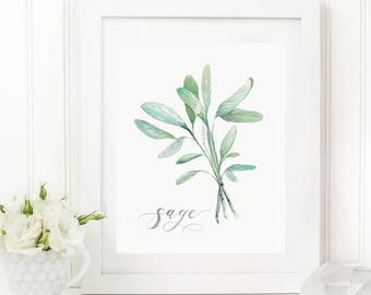 Sage Herb Watercolor Print | Watercolor Herb Print Set | Watercolor Herb Painting | Sage Artwork | Watercolor Herb Kitchen Decor