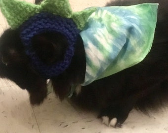 Seattle Tie-Dyed Pet Bandanna