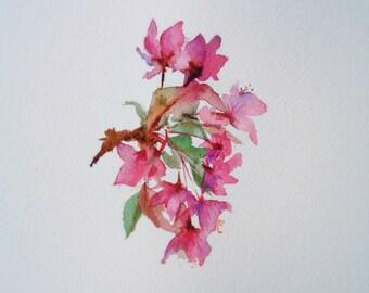 Cherry Branch ORIGINAL watercolor by RBrashears